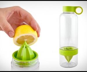480x400_citrus-zinger